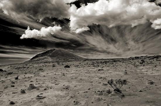 Sublime desierto - Toño Mesa