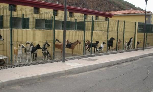 El albergue de Valle Colino se convierte en un servicio comarcal