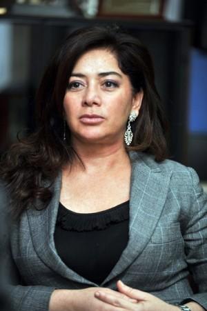 Beatriz Barrera, presidenta del Consorcio de la Zona Especial Canaria (ZEC). | F.P.