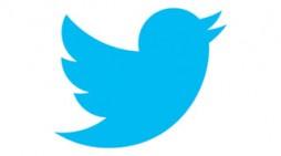 Twitter pierde 460 millones de euros y dos millones de usuarios en 2015
