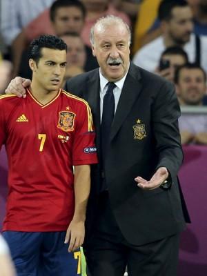 El seleccionador de España, Vicente del Bosque, da instrucciones al delantero tinerfeño Pedro Rodríguez, en la final de la Eurocopa 2012. | EFE