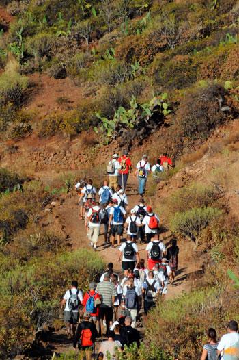 El Cabildo recomienda las rutas tradicionales a los peregrinos. / DA