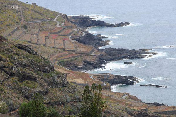 Costa de El Sauzal.jpg