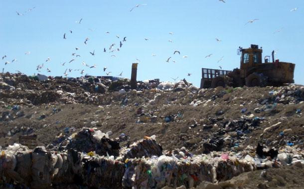 Complejo Ambiental de Arico