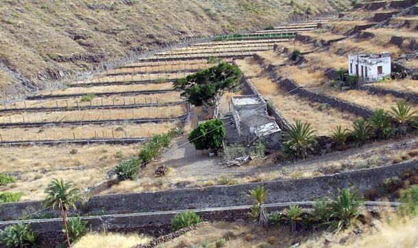 FINCA ABANDONADA EN EL BARRANCO DE LA CONCEPCION DESERTIZACIÓN DE LA GOMERA