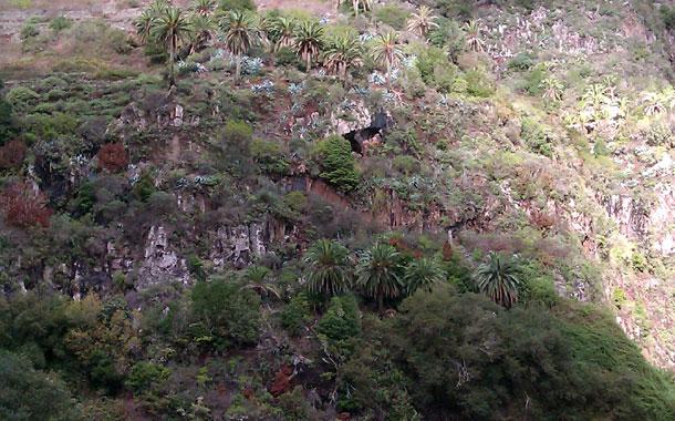 Zona de la presa de Los Tiles (Hermigua)