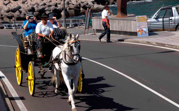 Coches caballos Garachico (MOISÉS PÉREZ)