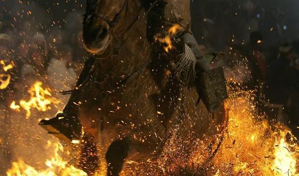 Más de un centenar de caballos, yeguas y burros atraviesan cada una de las hogueras en la festividad de San Antón