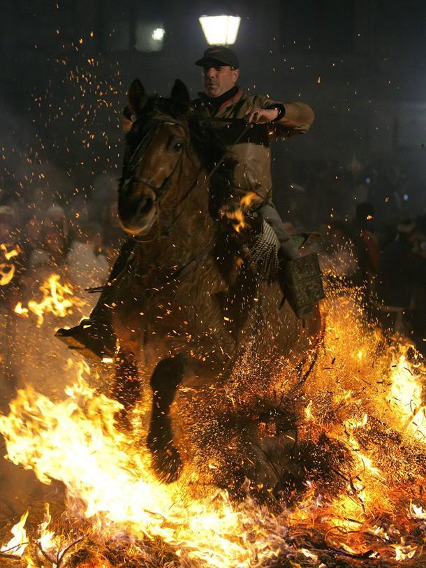 http://www.diariodeavisos.com/wp-content/uploads/2013/01/caballo-luminarias-San-Anton.jpg