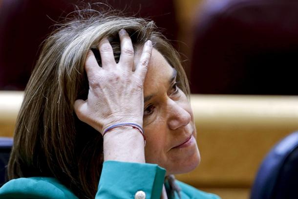 La ministra de Sanidad, Ana Mato, durante la sesión de control al Gobierno, en el pleno del Senado. | EFE