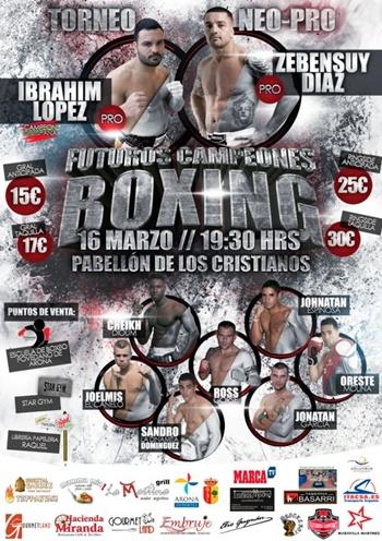 cartel boxeo arona