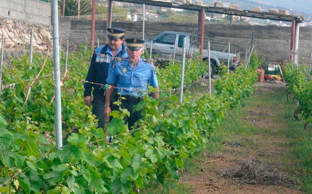 POLICÍAS LOCALES DE GÜÍMAR