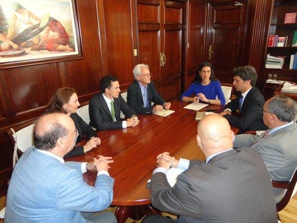 Representantes del sector se reunieron ayer con el subsecretario de Industria en Madrid. | DA