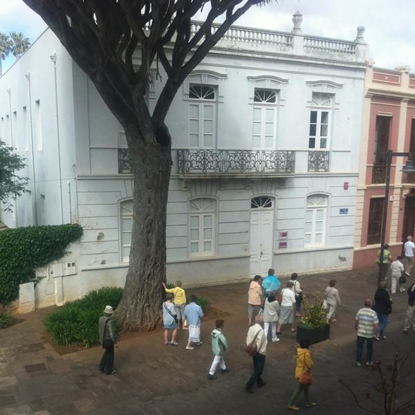 Un grupo de turistas, raspando en el drago de la Junta Suprema. | DA
