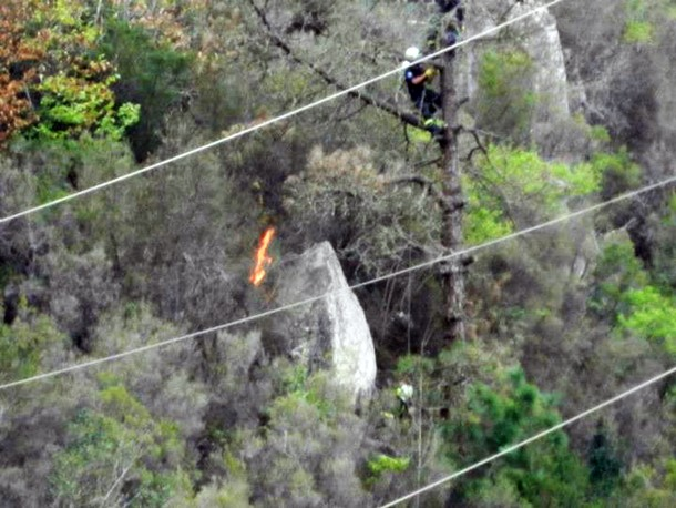 Imagen de la zona en la que se produjo el incidente por el roce de la rama de un árbol con el tendido. / DA