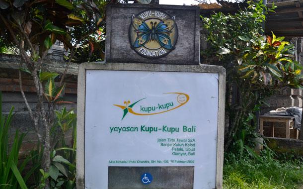 'Kupu Kupu' significa 'mariposa' en balinés. / DA