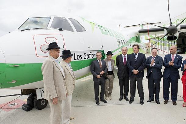 Los Gofiones avion Binter