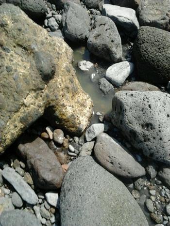 Aguas fecales en la Playa de Punta larga