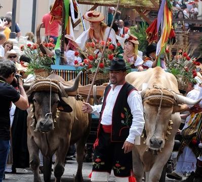 El Seprona intensifica el control del ganado en ferias y romerías