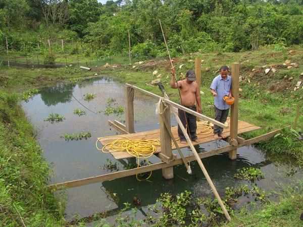 Acuicultores camboyanos. / DA