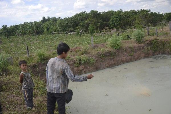 Un joven camboyano alimentando a los alevines en una granja acuícola de AIDA. / DA