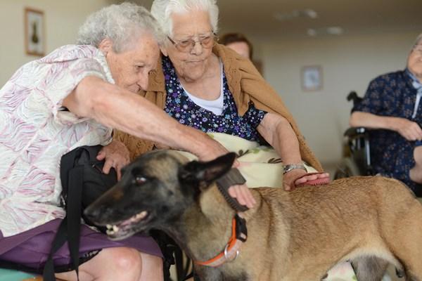La sesiones se realizan con la participación de Brega y todos los ancianos. | SERGIO MÉNDEZ