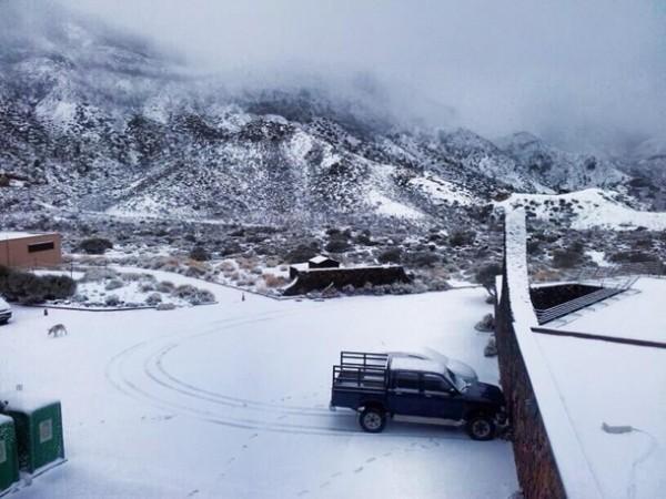 Parque Nacional del Teide DarioDorta1
