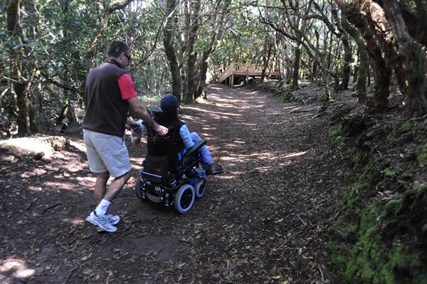 El colectivo de discapacitados es uno de los más afectados por los recortes en dependencia. | DA