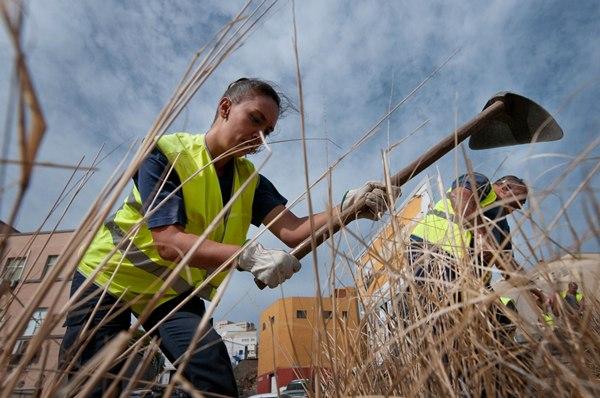 En la actualidad son 147 los trabajadores que se han contratado en la capital, por seis meses, para desempeñar tareas de limpieza en la ciudad. | F. P.
