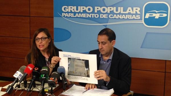 Los diputados regionales del PP Cristina Tavío y Felipe Afonso.   DA