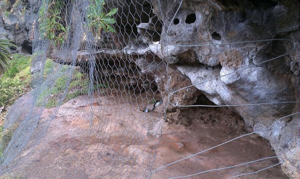 El colectivo advierte de la concentración de humedad por la malla. | DA