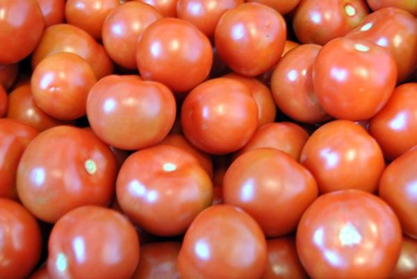 TOMATES El sector del tomate recibirá 5 millones de euros para iniciar la zafra