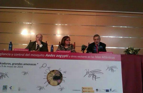 Díaz Flores, Reyes y Valladares, ayer en la apertura de las jornadas. / DA