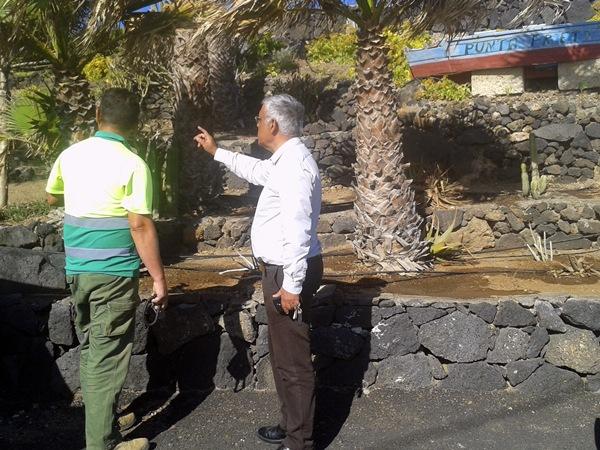 El concejal de Servicios Municipales y Medio Ambiente, Sixto Alfonso, en un jardín de Punta Prieta. / DA