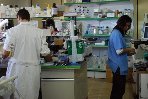 Las muestras de alimentos contaminados fueron analizadas por los técnicos de Salud Pública. / DA