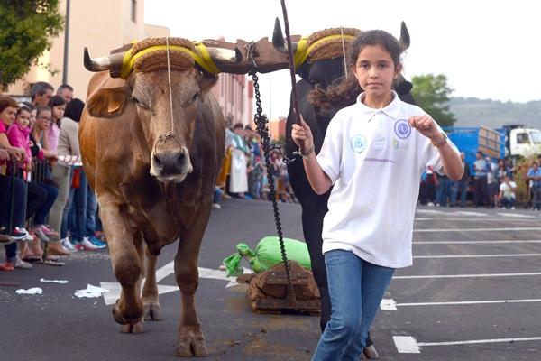 Una de las participantes en la competición celebrada ayer en La Laguna. / SERGIO MÉNDEZ