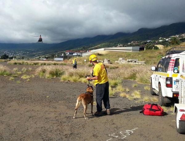 Un equipo del Grupo de perros de Salvamento se ha unido a la búsqueda. | AEACANARIAS