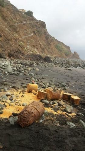 Santa cruz pasa la itv a sus playas diario de avisos - Itv puerto del rosario ...