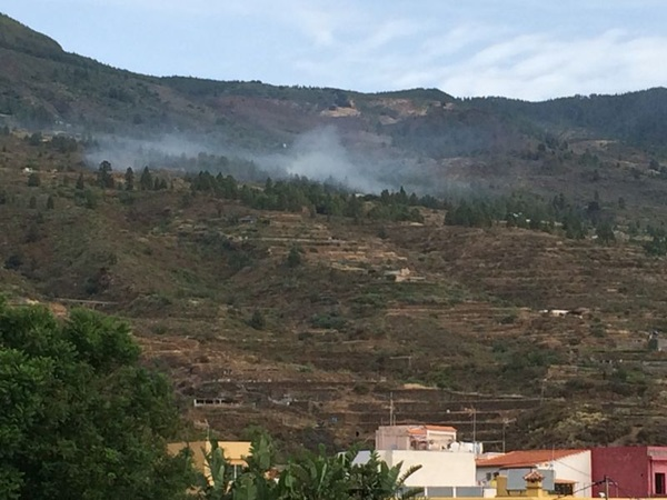 Conato de incendio en los Altos de Arafo. / MIGUEL EXPÓSITO