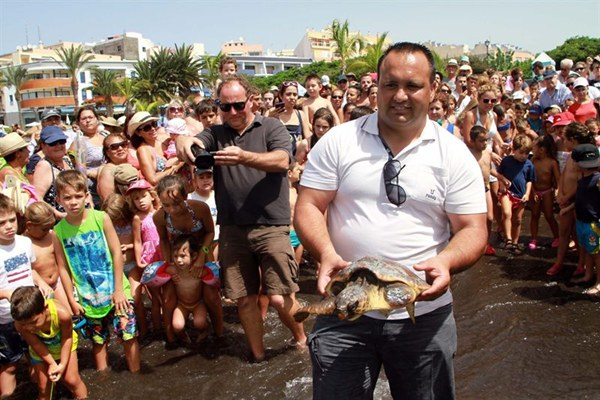 Numerosos niños quisieron ver cómo liberaban a las tortugas bobas. | DA