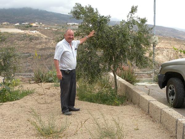 Manuel Marrero, junto a un olivo. / JOSÉ LUIS CONDE