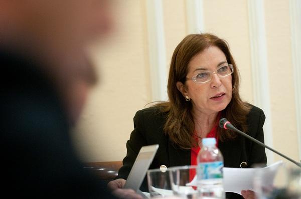 Brígida Mendoza, durante una comparecencia parlamentaria. / DA