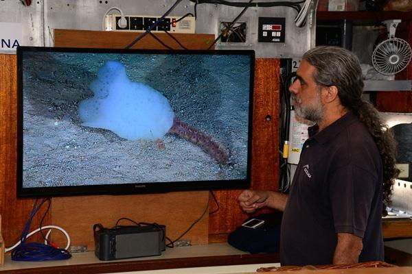 El director de la investigación observa la filmación sobre Tritón sur. / C.  MINGUELL