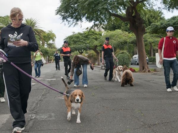 El Consistorio exige responsabilidad a los dueños de las mascotas. / JAVIER GANIVET