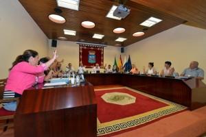 En el pleno del Cabildo herreño se abordaron diversas mociones planteadas por el grupo de la oposición. / DA