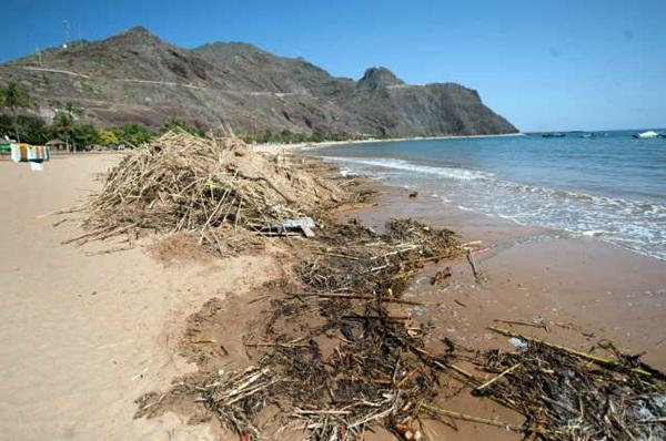Los operarios se centraron ayer en amontonar los cañizos que el agua procedente de los barrancos acarreó hasta la playa, que permanecerá cerrada hasta nuevo aviso. / FRAN PALLERO