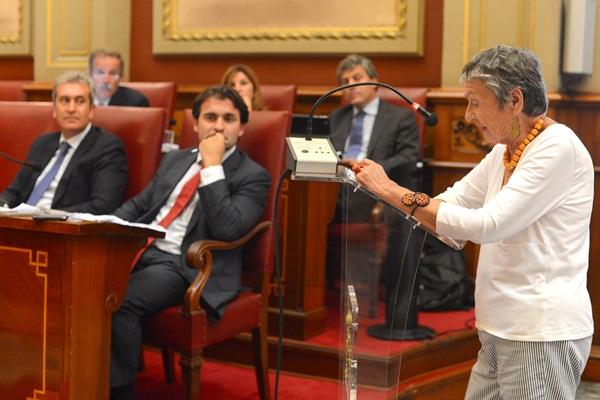 La presidenta de la Asociación Amigos de Las Teresitas, Lola Rebrow, leyó la moción de Ciudadanos. / S.M.