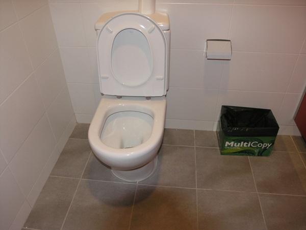 La carencia de papeleras en los baños es otra de las deficiencias . / DA