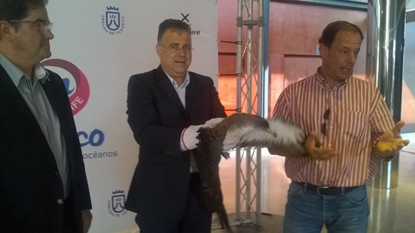 Francisco Niño y Antonio Sosa, con una pardela, junto al veterinario Santiago Mayans. / NORCHI