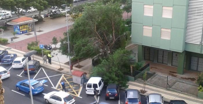Las fuertes rachas de viento provocan incidentes en toda Canarias